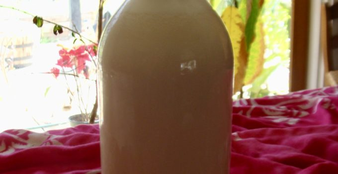 Sprouted Nut Milk